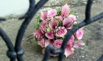 Svatba v růžovém