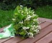 Něžná svatební kytice z konvalinek a kontryhelu