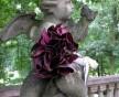 Svatební kytice z tmavých vínových kal a dlouhým úvazem
