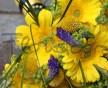 Letní žlutá svatební kytice z gerber, modré Veronica, kontryhelu a trávy