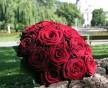 Kulatá svatební kytice rudých sametových růží