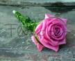 Korsáž z růžové růže a stočené trávy